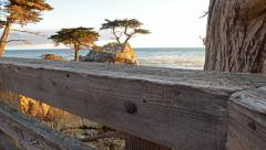 6K Motion Controlled Dolly Time Lapse of Lone Cypress in Monterey -Full Frame- Stock Footage