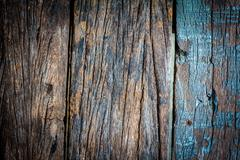 texture and color of old  log - stock photo