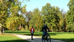 Autumn park (trees) - people walking (relax) and cyclists - path - fallen leaves Stock Footage