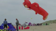 Fun on the beach, Wind and kites Stock Footage