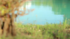 Magical Lake - stock footage