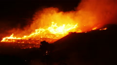 A bushfire burning orange and red at night, 4k Stock Footage