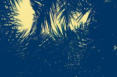 Palm trees vintage Stock Photos