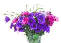 Bouquet  of  purple and mauve eustoma flowers Stock Photos