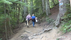 Couple of elderly tourists walking on a mountain trail. Holiday trip. - stock footage
