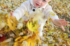 Young child playing with fallen leaves in autumn Stock Photos