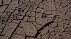 4K Man Removes Cracked Mud Pieces From Dry Puzzle Landscape Stock Footage