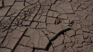 Stock Video Footage of 4K Man Removes Cracked Mud Pieces From Dry Puzzle Landscape