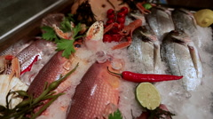 Counter with sea delicacies Stock Footage
