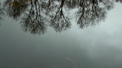 Autumn daylight landscape reflected in water Stock Footage