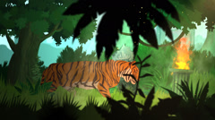Tiger Walking In Jungle. Forest Tropical Wild Stock Footage