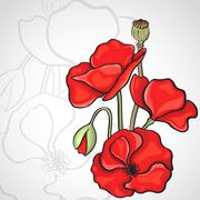 Stock Illustration of papaver rhoeas also known as corn poppy