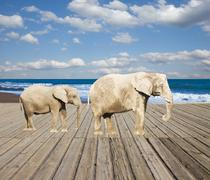 Old pier with elephants Stock Illustration