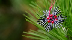 Christmas decoration on coniferous trees Stock Footage