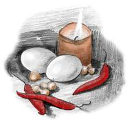 eggs, peppers, crocus bulbs and candle light still life. pencil sketch drawin - stock illustration