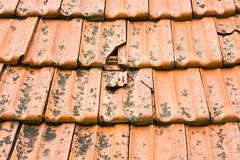 Broken tiles Stock Photos