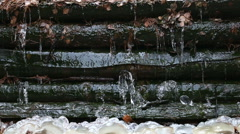 Thaw and falling drops of water 3 Stock Footage