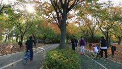 Tilt down shot of people bicycling and walking at park with fallen leaves Stock Footage