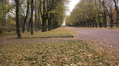 Falling leaves on the background of people walking in the park - stock footage