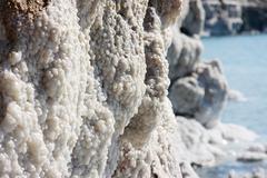 Dead sea crystals Stock Photos