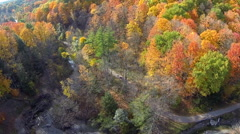 Fall Trees Aerial 04 Stock Footage
