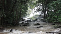 Waterfall in the forest - stock footage