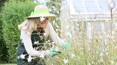 Smiling woman with hat gardening aromatic plants Stock Footage