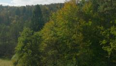 AERIAL: Forest glade Stock Footage