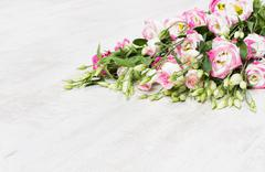 Lisianthuses  flower bouquet lying on white floor Stock Photos