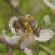 Bee on bloom pixelated image generated texture Stock Illustration