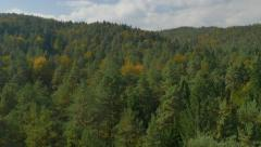 AERIAL: Beautiful colorful forest in autumn Stock Footage