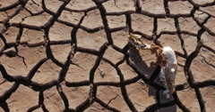 Dry Lake Famine Global Warming Climate Change Panning Shot in 4K - stock footage