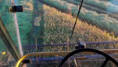 Farmer driving combine harvester for harvesting wheat, rice, rye, sony 4k sho Stock Footage
