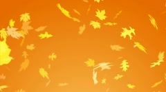 Autumn Leaves Fall Template HD CS4+ Stock After Effects