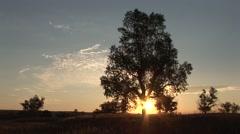 Prairie Badlands National Park Summer Sunrise Stock Footage