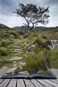Solitary tree on mountain and footpath landscape in summer conceptual book im Stock Photos