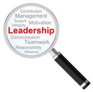The leadership Stock Illustration