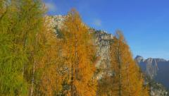 AERIAL: Amazing colors of autumn in the mountains - stock footage