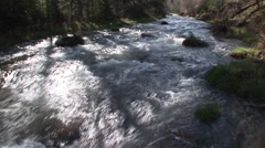 River & Stream Black Hills Spring Stream Rapids - stock footage