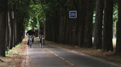 Couple riding bicycles down a tree lined street and kissing Stock Footage