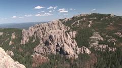 Forest Black Hills Summer Granite Spires Forest - stock footage