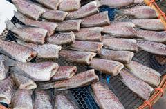 dried fish on the grid - stock photo