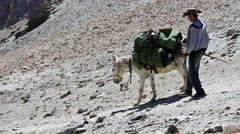 The descent from the pass with the donkeys Stock Footage