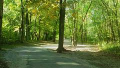 Autumn in the Wood Stock Footage