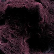 Symmetrical growth of bacteria - stock illustration