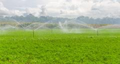 Morning view of a hand line sprinkler system in a farm field Stock Photos