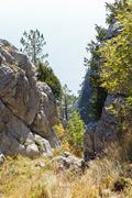 Gorge in ai-petri rocks on black sea coast Stock Photos