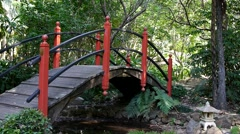 Bridge in Japanese Garden 50p Stock Footage