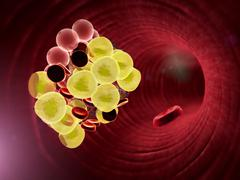 fat cell, erythrocyte - stock illustration