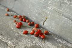 Desiccated orange berries on wooden table Stock Photos